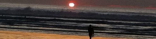 cropped-tofino-sunset.jpg
