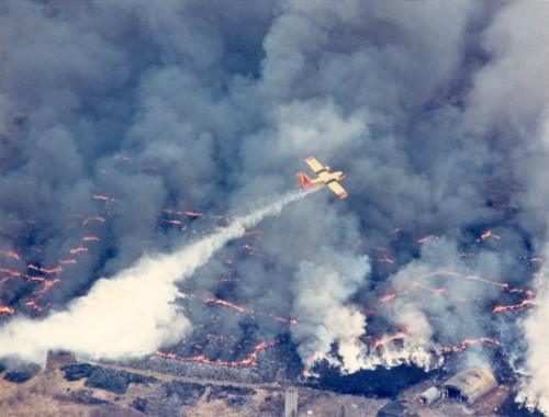 This photo of an airplane fighting a 1990 fire led a Flashback photo gallery for the Hamilton Spectator on the 25th anniversary of the fire.